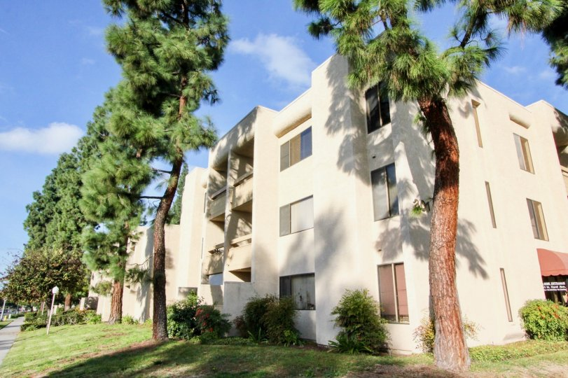 A apartment building in Fullerton Fountains with trees on a sunny day.