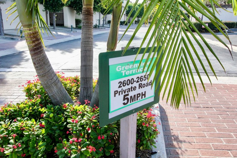 Speed limit sign in Greenview Terrace with palm trees and flowers.