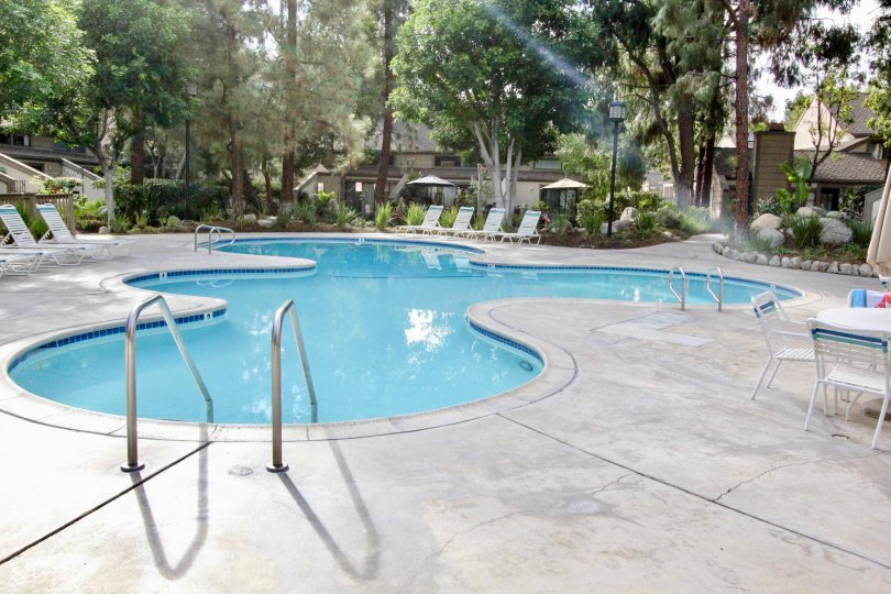 Private freeform swimming pool with chaise lounges, tables and chairs surrounded by tall trees in Hidden Lakes, Fullerton, CA
