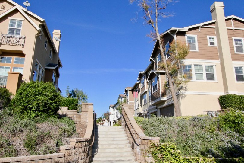Rock stairway leading up to residential buildings in the Radcliffe community.