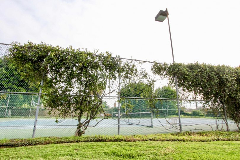 Tennis courts of the Stone Pine Estates community with a fence and trees.