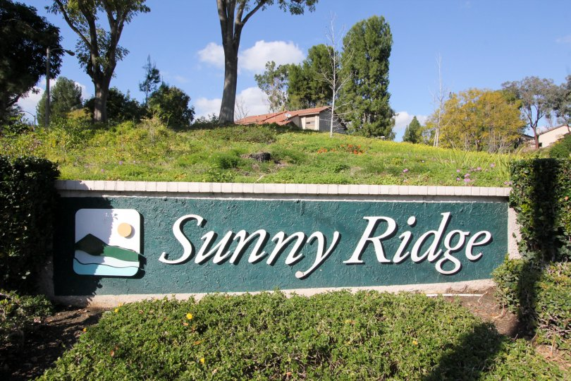 A SUNNY MORNING AT SUNNY RIDGE TOWNHOMES IN FULLERTON CITY