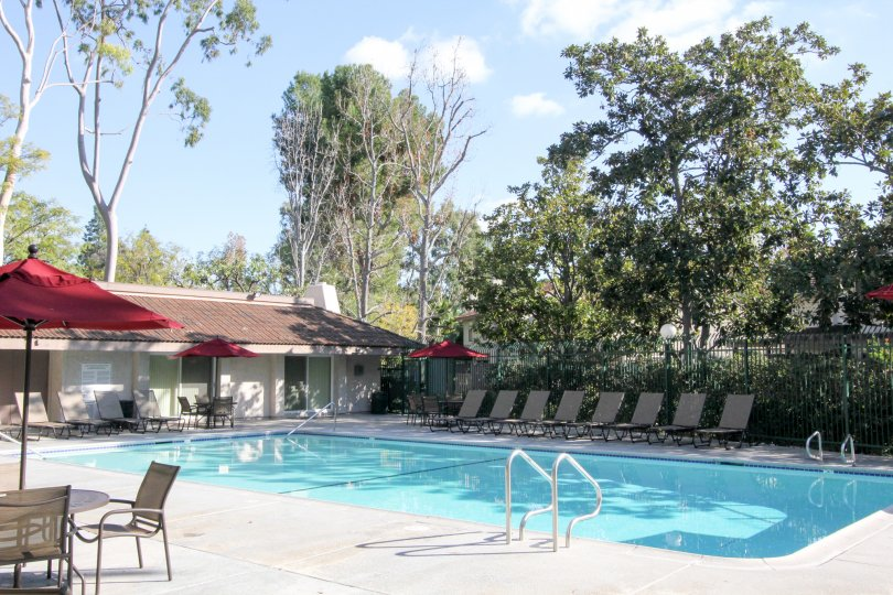 A sunny pool lined with lounge chair located in Sunny Ridge Townhomes community.