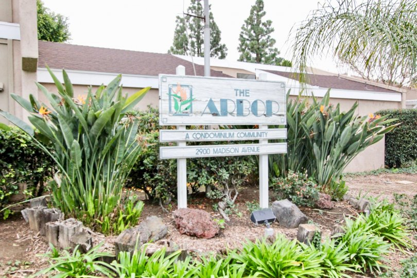 The Arbor Fullerton California with linear walls decorates, sign boards, long dark plants and trees