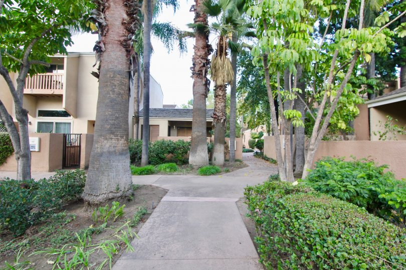 A sidewalk path through homes in the Water Gardens neighborhood of Fullerton, California.