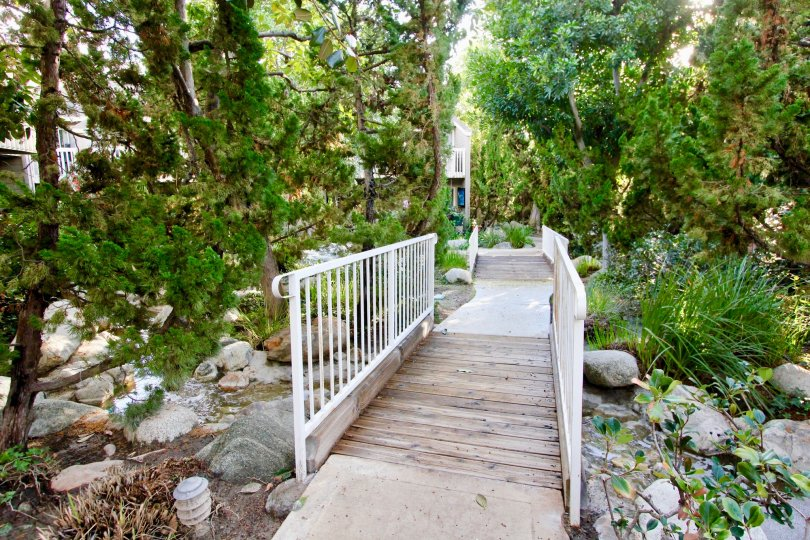 THE FLAT IN THE COBBLESTONE CREEK WITH BRIDGE, STONES, WATER, PLANTS, TREES