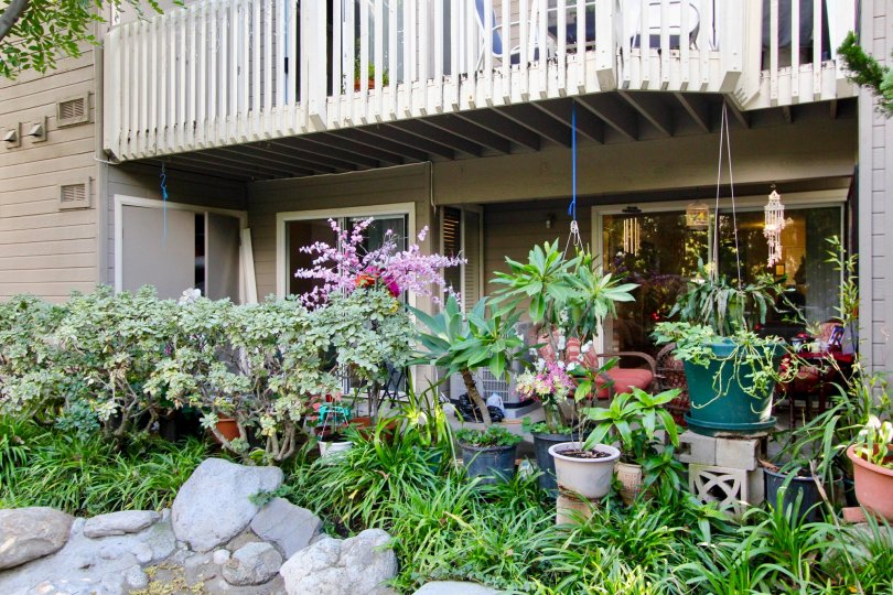 THE FLAT IN THE COBBLESTONE CREEK WITH THE FLOWER POTS, ROCKS, PLANTS