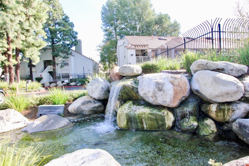 Lakeside Apartments has gorgeous pond, located in Garden Grove California