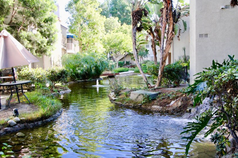 A stream runs in between houses in Garden Grovelifornia, with beutiful trees and plants on sides