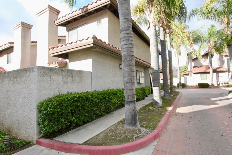 Regency Terrace in Garden Grove California with great structures, tall palm trees and brick road