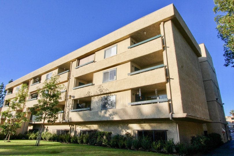 THIS IMAGE REPRESENTS THE APARTMENTS ARE PLACED IN THE COMMUNITY OF THE GROVE, THAT HAVE THE BEAUTIFUL LAWN, TREES, AND THE PLANTS