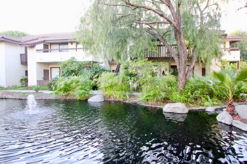 THIS IMAGE SHOWS THE LAKE NEAR BY THE HOME WITH TREES AND PLANTS WHICH IS IN THE VILLAS