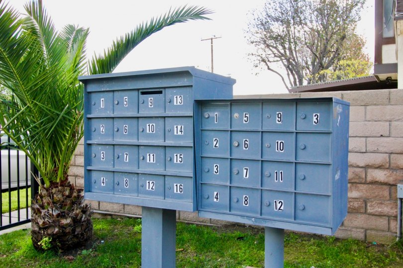 There are many postal boxes placed in front of the entrance in Tudor Estates