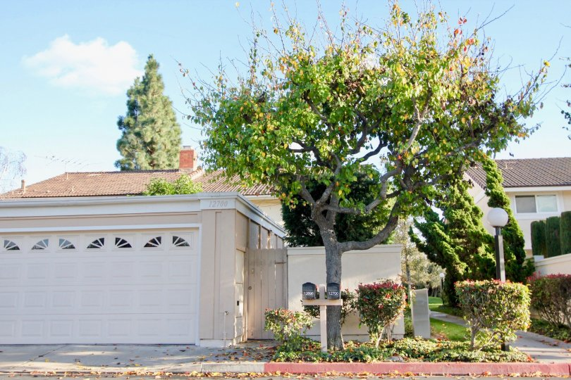 THE 12790 FLAT IN THE VALLEY VIEW PARK WITH THE SHUTTER PLANTS, TREES