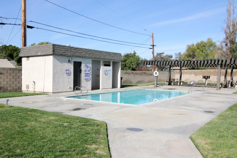 THE FLAT IN THE WILLOW TRAIL WITH THE SWIMMING POOL, GRASSLAND, TREES