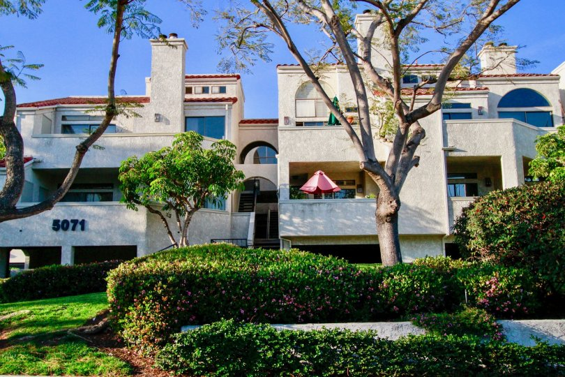 A huge apartment in the Cabo Del Mar is looking row houses with lots of trees and plants.