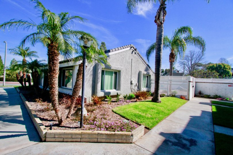 Cherrywood Village Huntington Beach California the bended palm trees add beautiness