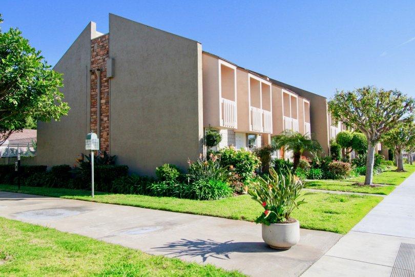 Nice Green Lawn with beautiful trees around villa in Christiana Bay of Huntington Beach