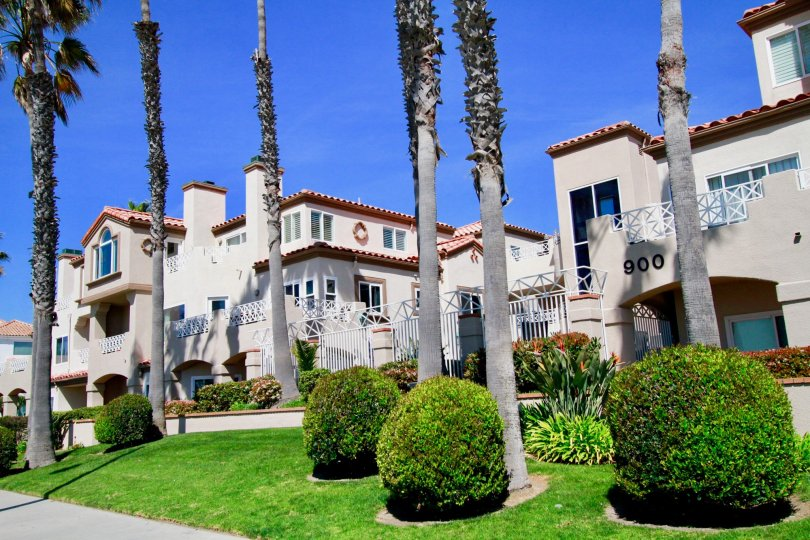 Excellent view of Palm trees and lawn in front of villas in Faire Rivage of Huntington Beach
