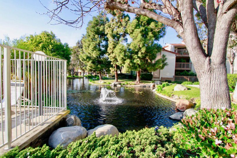Beautiful Fountain place with small pond with trees near villas in Harbour Vista of Huntington Beach