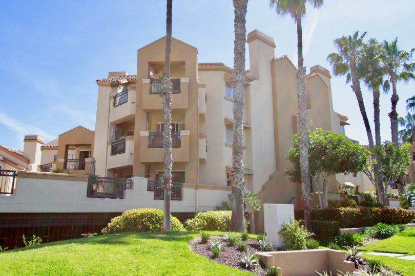 Fabulous long palm trees with lawn near Apartments in Huntington Bayshore of Huntington Beach