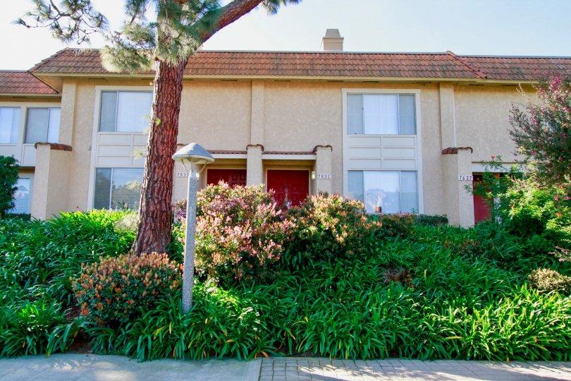 Fabulous greenary in front of villa in Huntington Creek of Huntington Beach