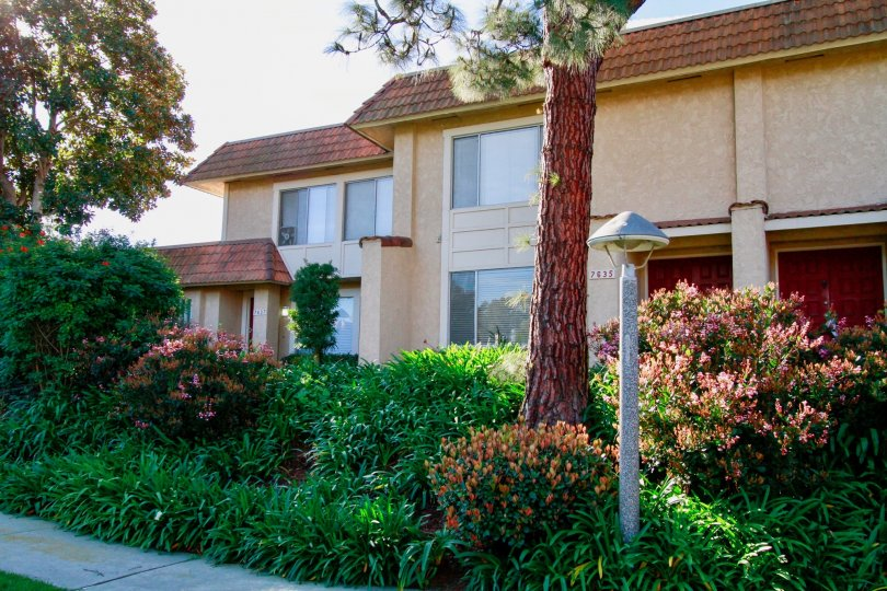 Fabulous villa having green trees besides in Huntington Creek of Huntington Beach