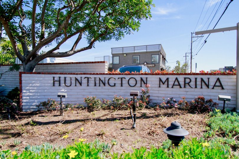 THE WALL REPRESENTS THE HUNTINGTON MARINA AND IT LOOKS LIKE THE ENTRANCE AREA OF THE INSIDE BUILDINGS AND A TREE ALSO NEAR TO THE ENTRANCE.