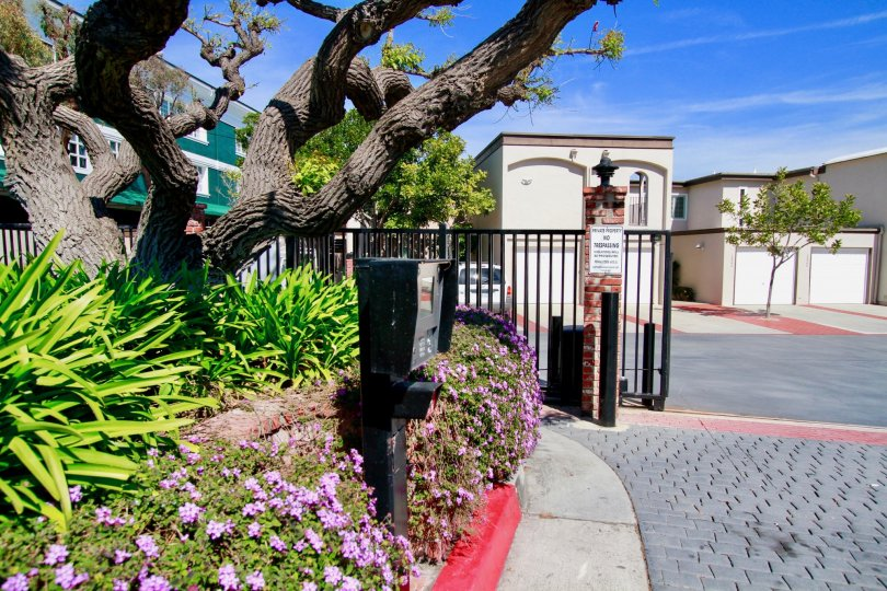 The front portion of Huntington Marina with gates open and flowering plants at entrance
