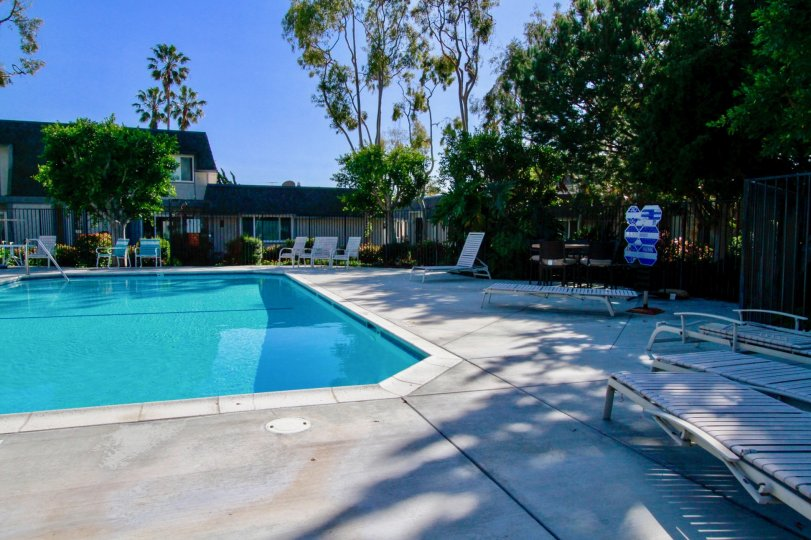 Beautiful cool swimming pool with sitting place and trees around in Mariners Cove West Huntington Beach