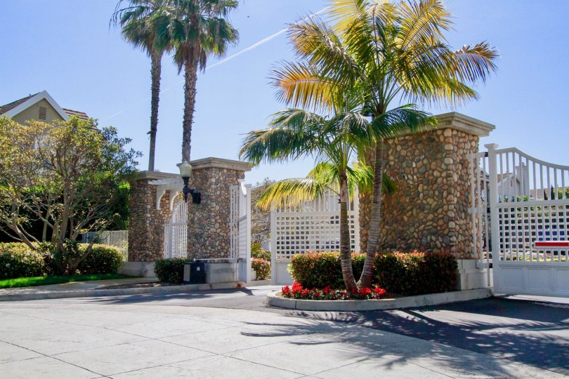 Mystic Pointe gate with palm trees and flowers on a sunny day.
