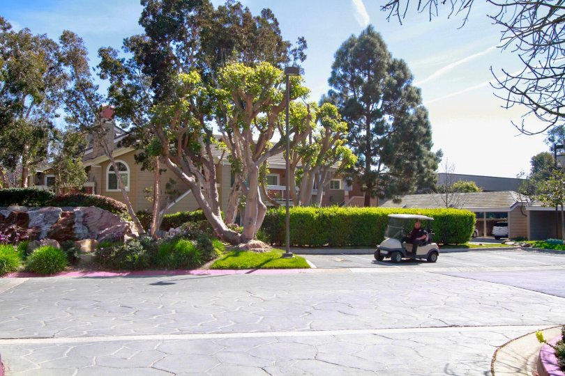 Pacific Ranch Townhomes street with a golf cart and trees on a sunny day.