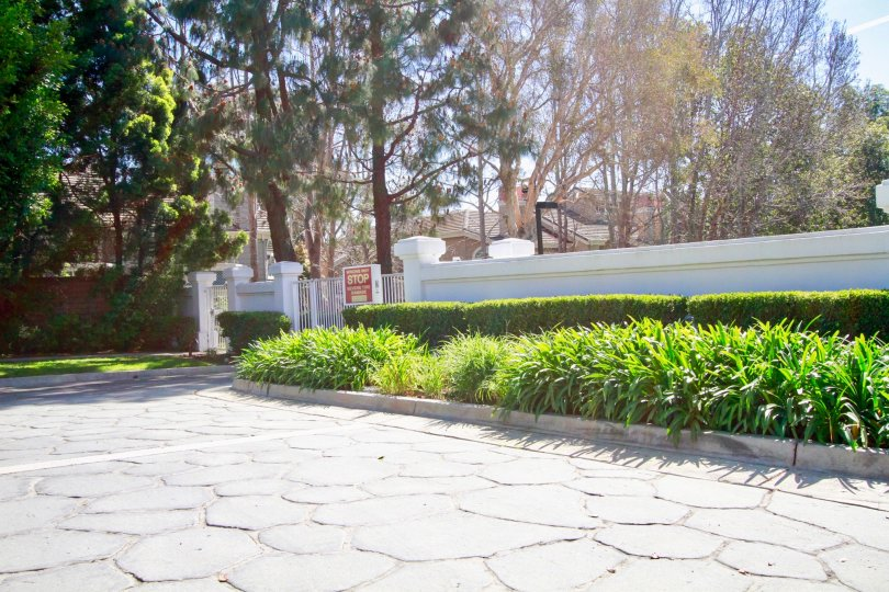 Excellent external view of villas with trees and plants in Pacific Ranch Villas of Huntington Beach