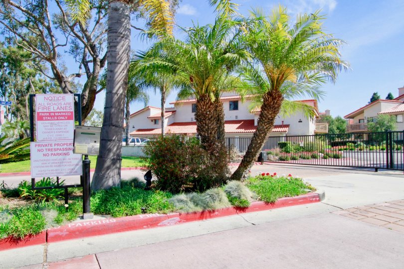 Excellent palm trees with main gate of villas having sign boards in Pierpointe of Huntington Beach