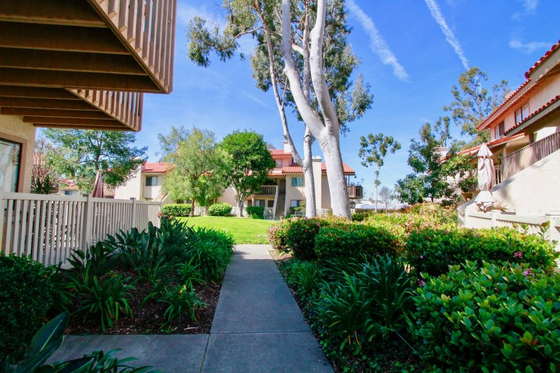 Overall view of garden and trees near villas in Pierpointe of Huntington Beach