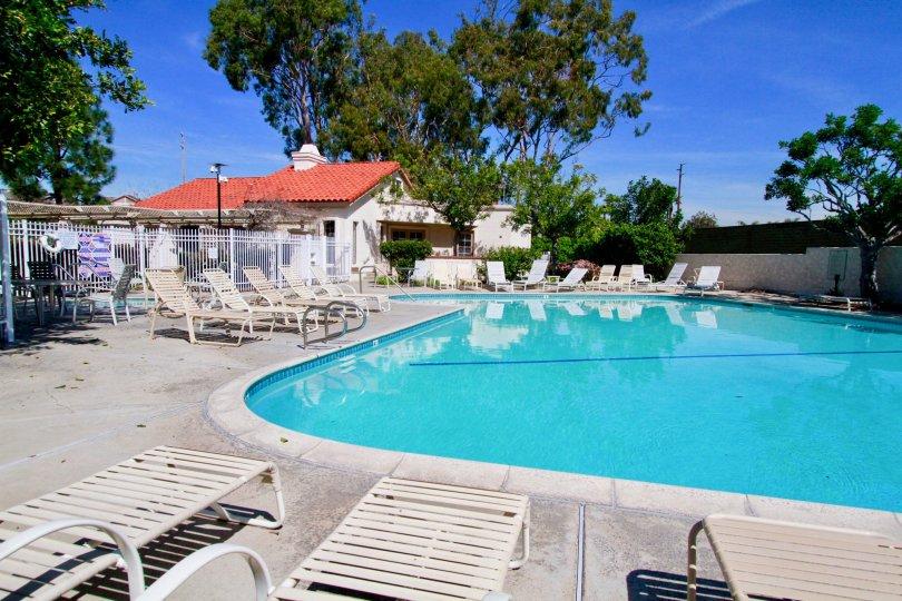 best swimpool in california, Pierpointe swimpool, Huntington Beach in california