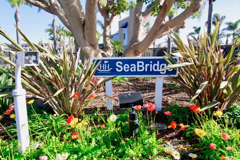 Seabridge in Huntington Beach, best places in California, sea bridges in California