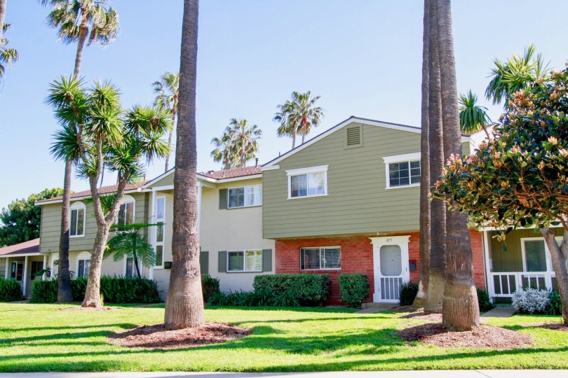 Houses and tress in the Surfside community of Huntington Beach, California.