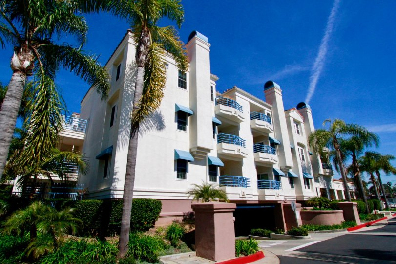 Townsquare Condos building with balconies and palm trees on a sunny day.