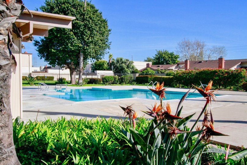 Warm day at the pool in the Villa Pacific community in Huntington Beach, California.