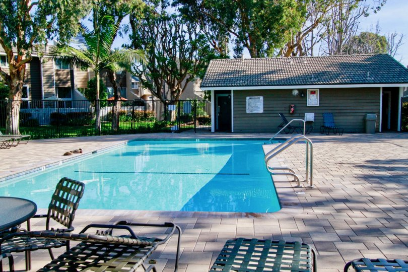 Village Court pool with lounge chairs and pool house on a sunny and cloudless day