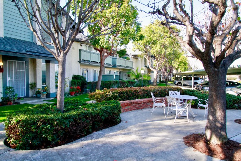 Windward Cove courtyard with chairs and a table on a sunny day.