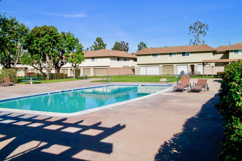 A sunny day in the Yorktown villas with swimming pool, trees, chairs, lawns and also with nearby houses.