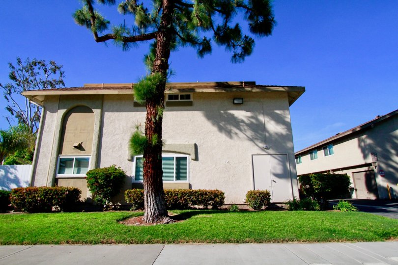in yorktown villas of huntington beach, california has a home which is look like the home under the tree
