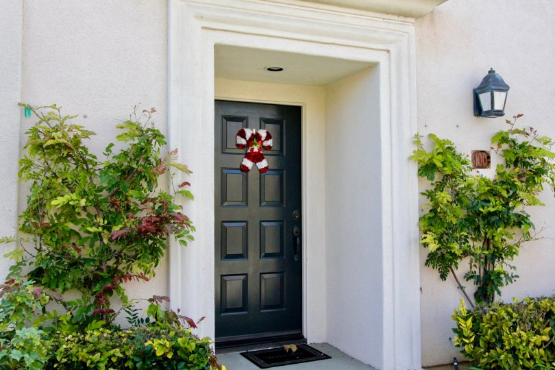THIS IMAGE SHOWS THE FRONT VIEW OF THE HOME THAT SHOWS THE DOOR, LAMP AND DOOR NUMBER SIDEBY PLANTS ARE PLANTED IN THE CITY OF IRVINE