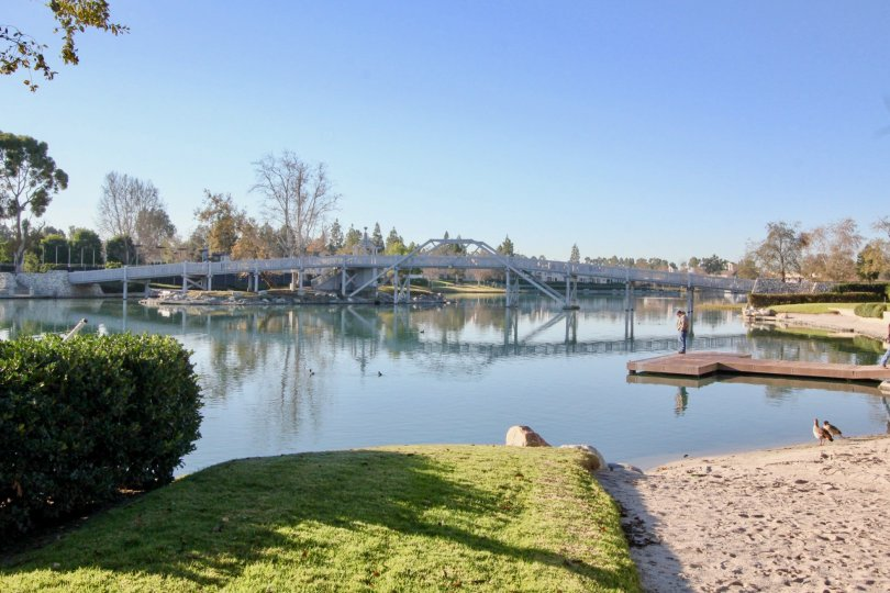 A sunny day in Arborlake with a bridge above a river or a lake and trees.