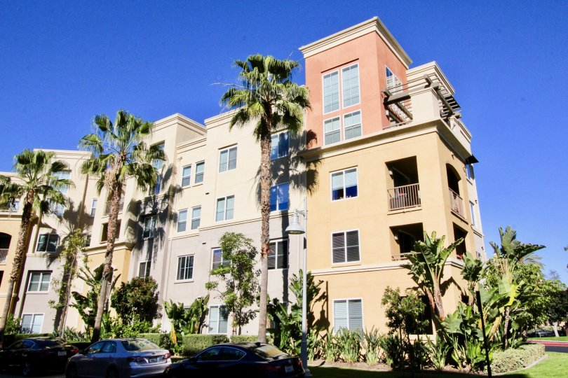 THE APARTMENT WHICH IS IN IRVINE, THAT SHOWS THE GLASS WINDOWS, LOT OF TREES, PLANTS
