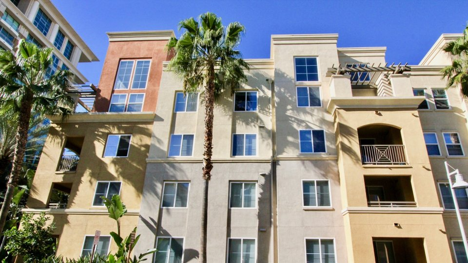 THIS IMAGE REPRESENTS THE BEAUTIFUL APARTMENTS AT THE CITY OF IRVINE WHICH HAVE THE MANY FLATS, PLANTS AND THE TREES