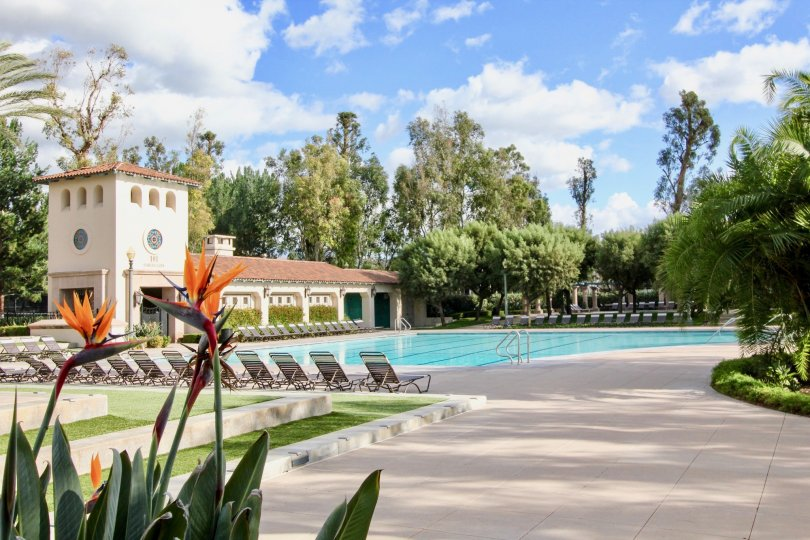 THE BEAUTIFUL SWIMMING POOL WITH LOT OF CHAIRS, TREES, PLANTS WHICH IS IN THE CITY OF IRVINE