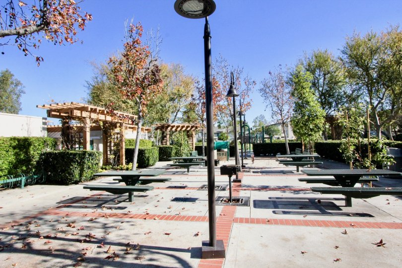 The Place in Columbia Square has Dinning tables, Street lamps with plants and trees
